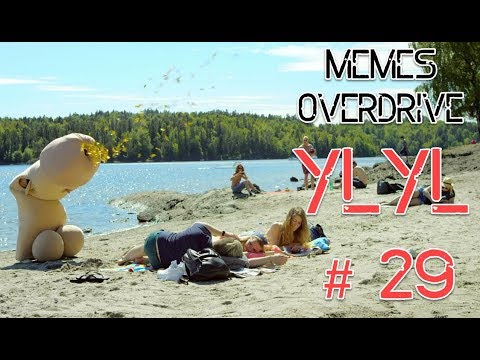 YLYL #29 Compilation from YouTube, Reddit, 4chan memes webms
