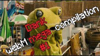 YLYL 4chan dank WebM mega compilation #1