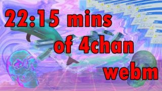 22:15 mins of 4chan WebM Compilation #3