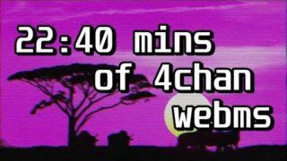 22:40 mins of 4chan WebM Compilation #6